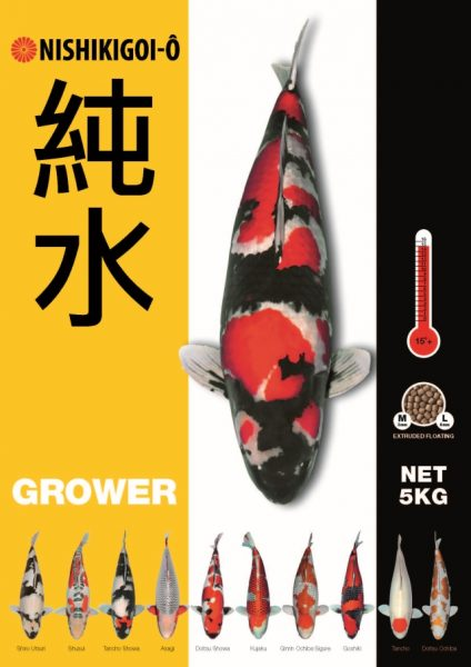 nishikigoi-o-grower-koivoer-de-koistal