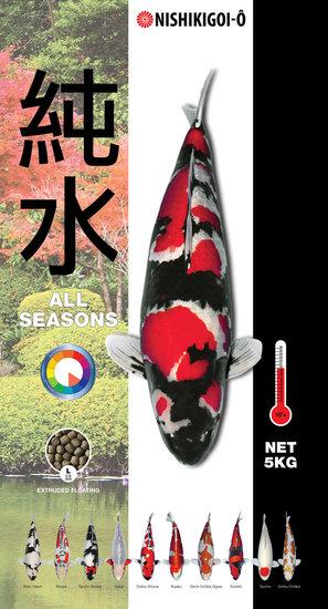koivoer-nishikigoi-o-all-season-de-koistal